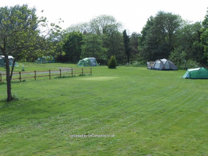 Budle Bay Campsite , Belford Campsites, Northumberland