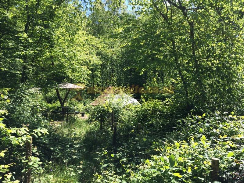 Eco Camp At Wild Boar Wood , Haywards Heath Campsites