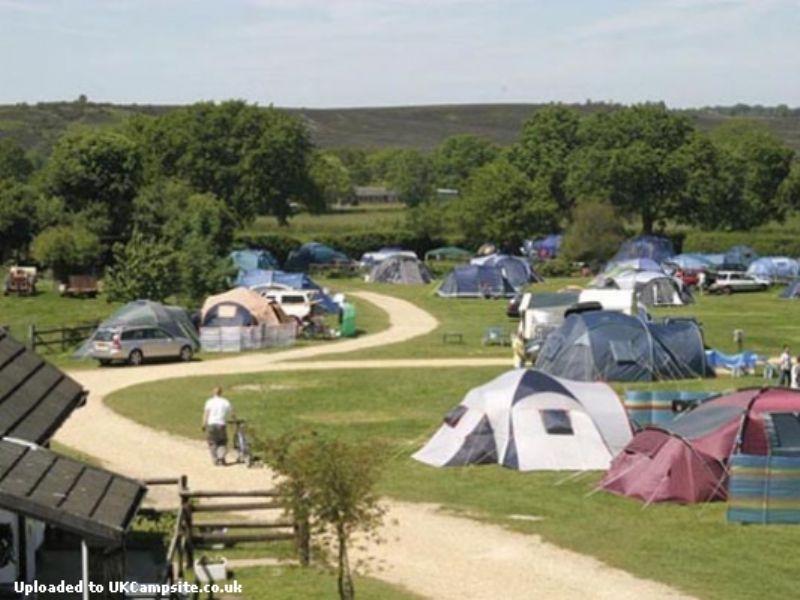 Reviews Of Red Shoot Camping Park Ringwood Hampshire