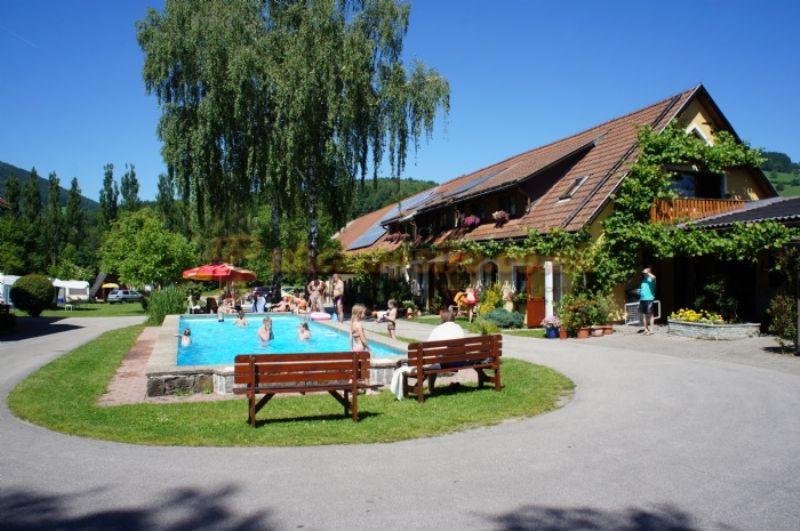 Terrassen Pool terrassen cing traisen traisen csites austria