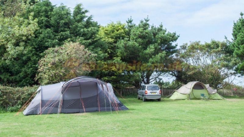 Seacroft caravan and motorhome club site cromer - Campsites in norfolk with swimming pool ...
