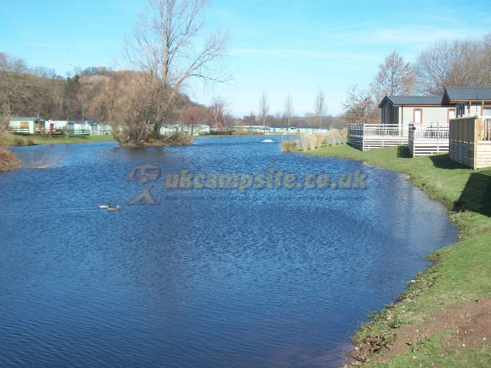 Brilliant Full Sized Photos Of Riverside Country Park In NorthumberlandEngland