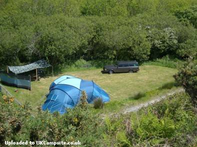 Trellyn Woodland Camping And Yurts
