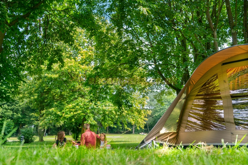 nl campsites England South East Kent Maidstone scragged oak caravan park