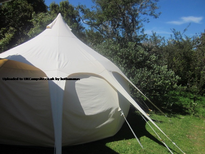If ... & Lotus Belle Tent Reviews and Details