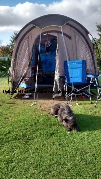 If ... & Gelert Horizon Porch Tent Extension Reviews and Details
