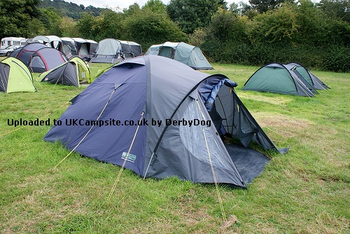 If ... & Peakland Denby 300 Tent Reviews and Details