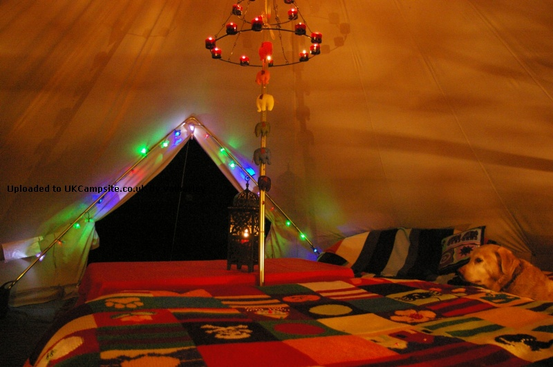 If ... & Bell Tent 5m Ultimate Tent Reviews and Details Page 2