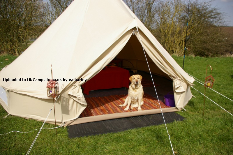 Bell Tent Decor Inspiration Bell Tent 5M Ultimate Tent Reviews And Details Decorating Design