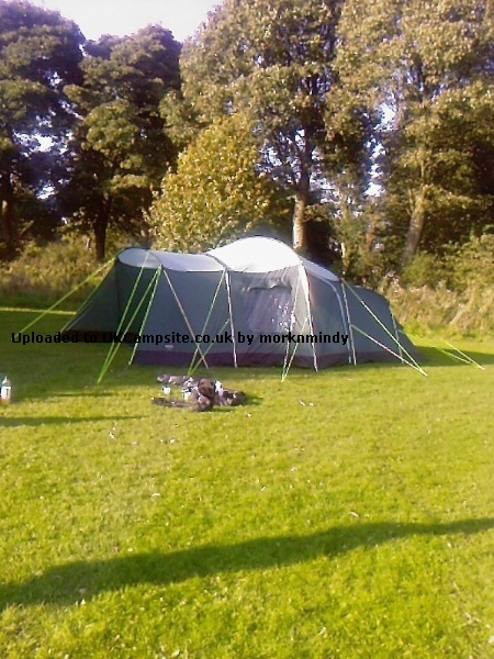 Wynnster Eagle 6 Tent Reviews and Details