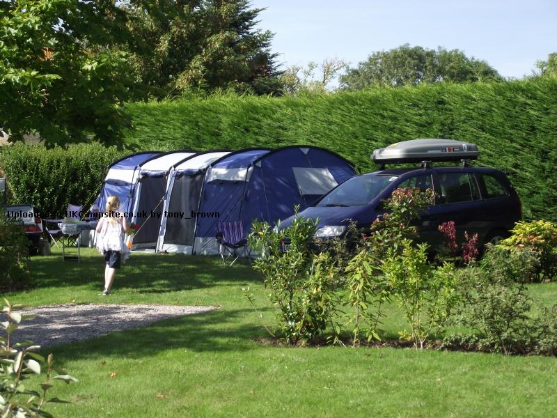 If ... & Skandika Montana 8 Tent Reviews and Details